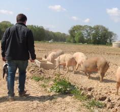 Agriculture et bio